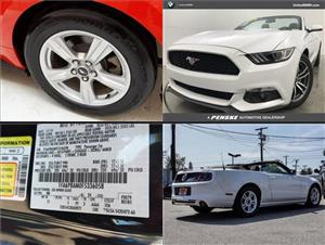 Used Ford Mustangs for sale