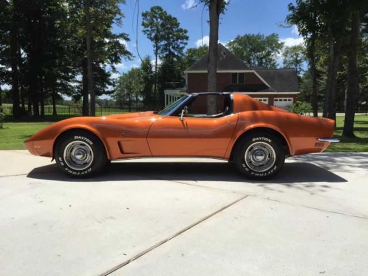 1973 chevrolet corvette for sale by owner in riviera tx. Cars Review. Best American Auto & Cars Review