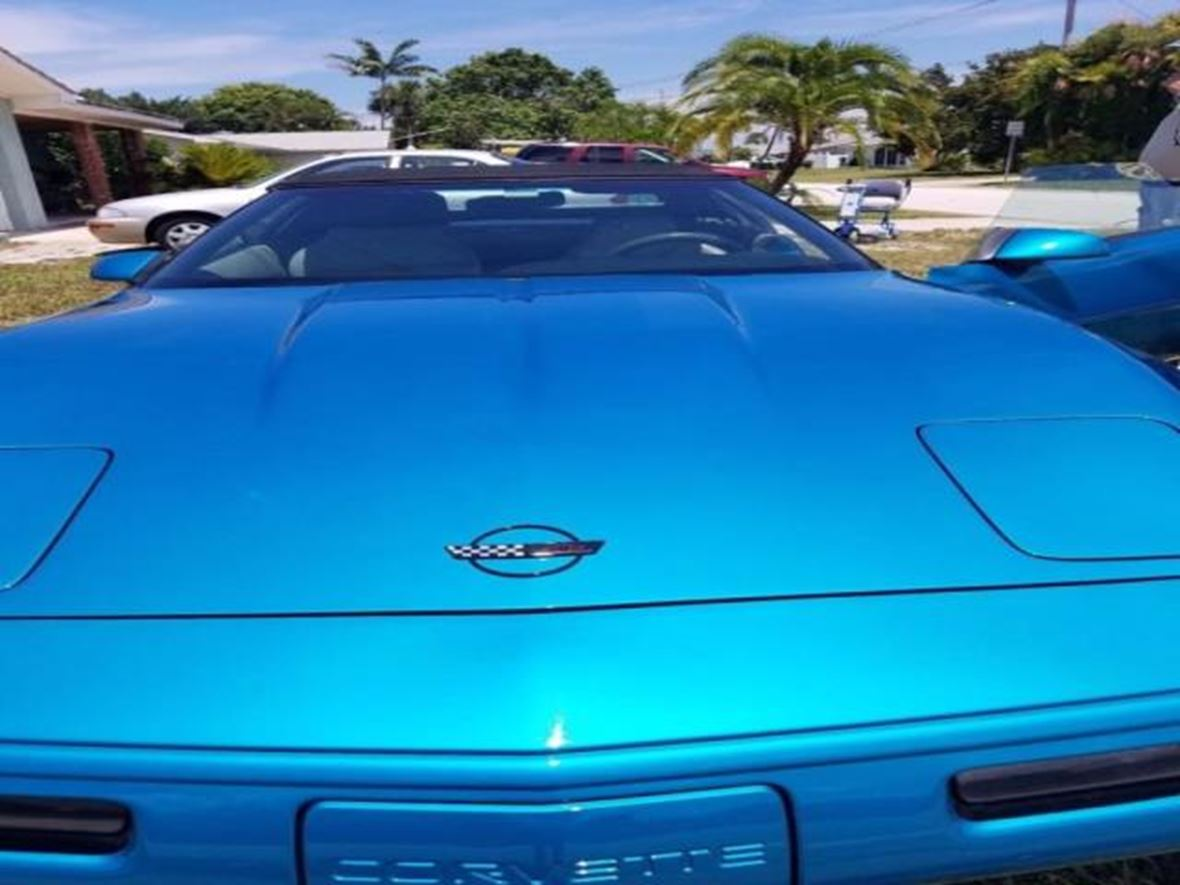1995 chevrolet corvette for sale by owner in lutz fl 33559. Cars Review. Best American Auto & Cars Review