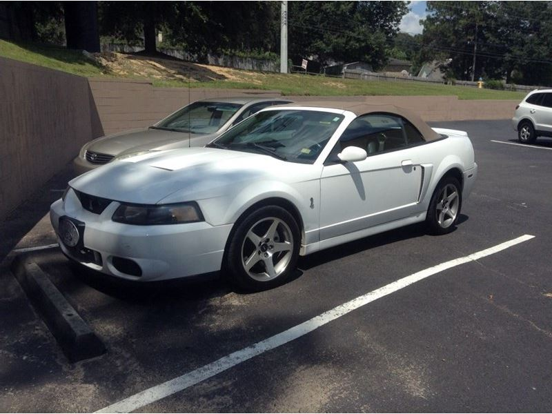 used ford mustang svt cobra for sale autolist autos post. Black Bedroom Furniture Sets. Home Design Ideas