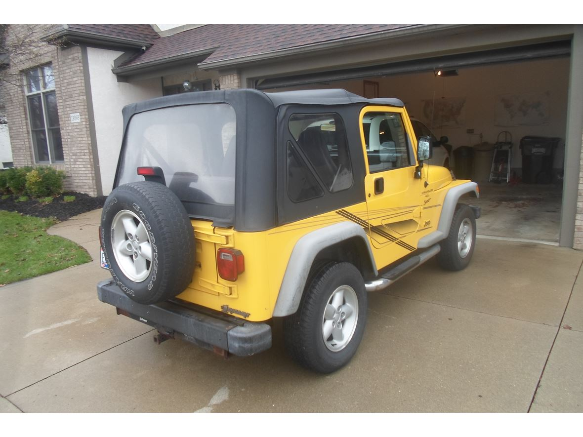 2001 jeep wrangler for sale by owner in pickerington oh 43147. Black Bedroom Furniture Sets. Home Design Ideas