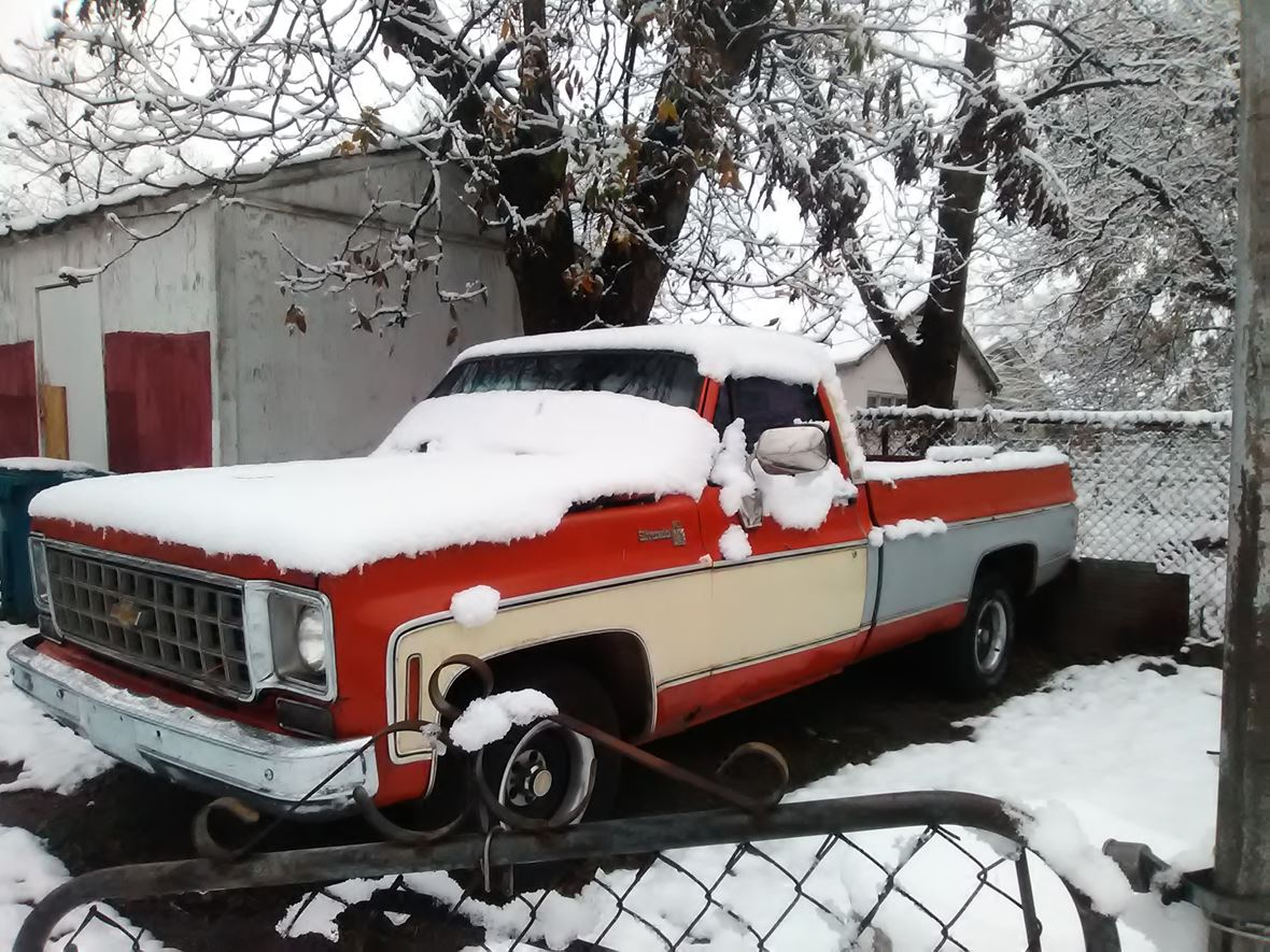 1976 Chevrolet C/K 1500 for sale by owner in Birmingham