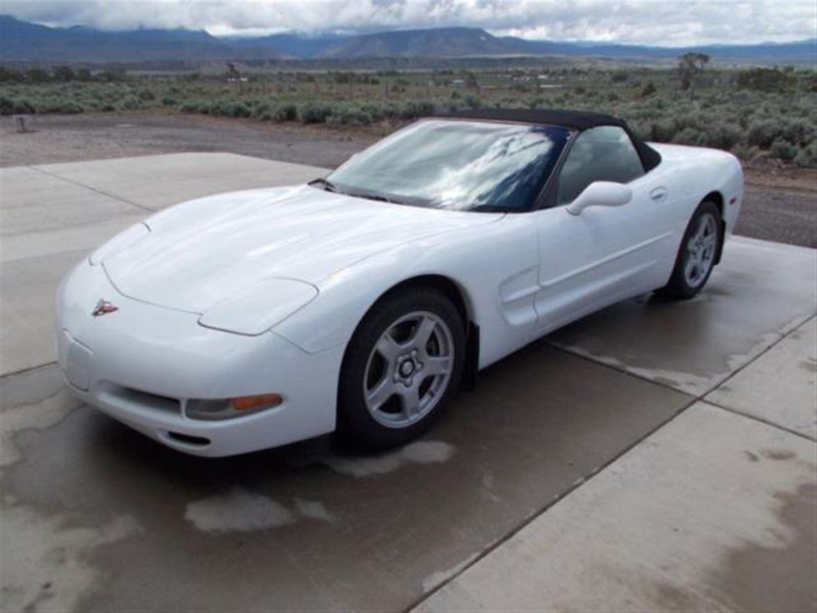 1999 Corvette For Sale >> 1999 Chevrolet Corvette For Sale By Owner In Aurora Co 80047 7 000