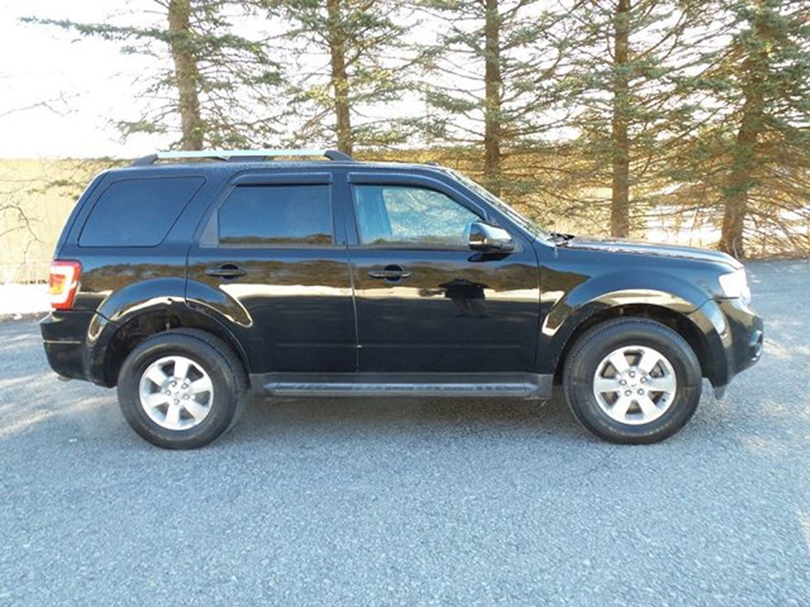 2010 Ford Escape For Sale >> 2010 Ford Escape For Sale By Owner In Burnt Hills Ny 12027