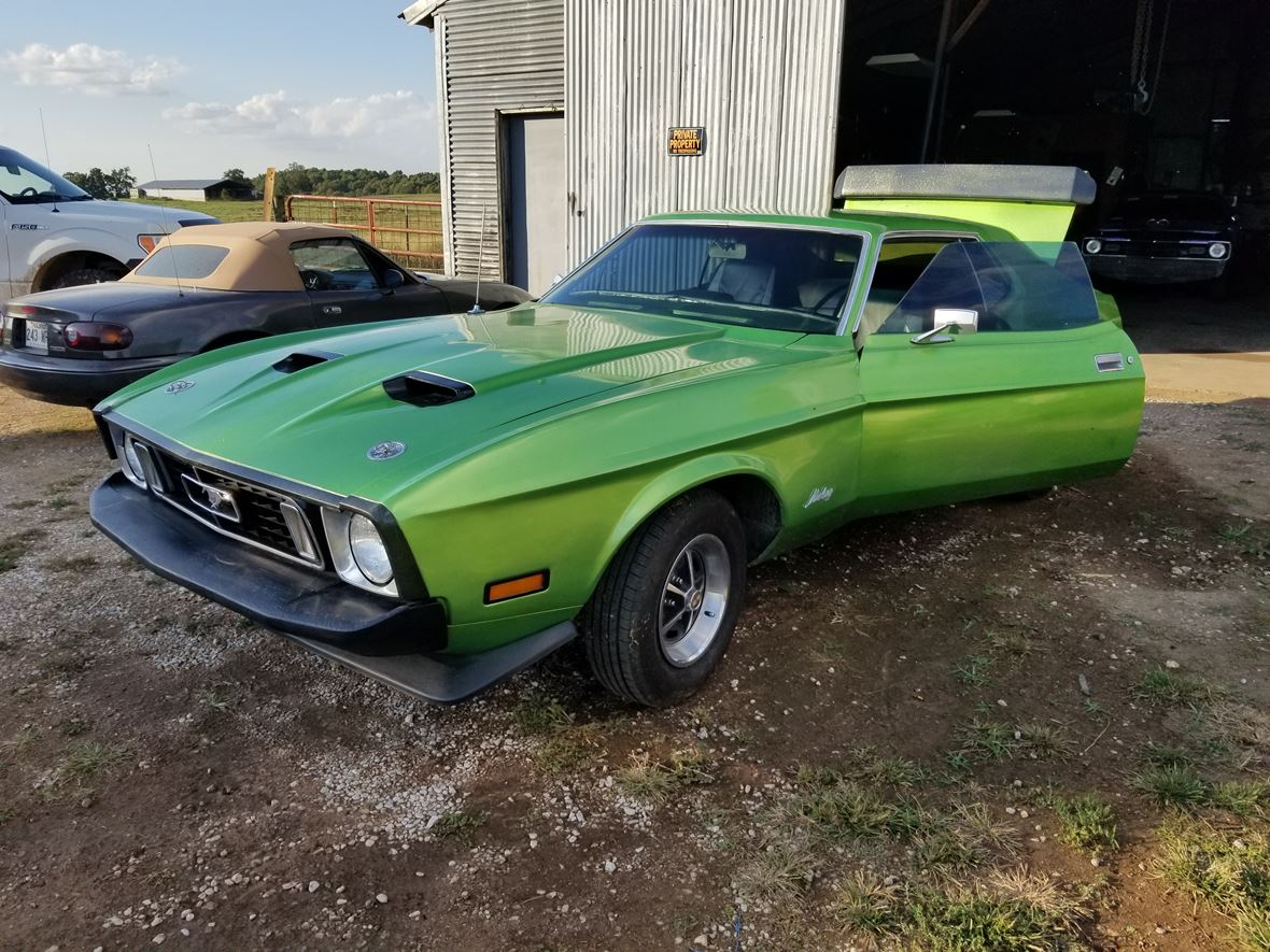 1973 Ford Mustang for sale by owner in Batesville