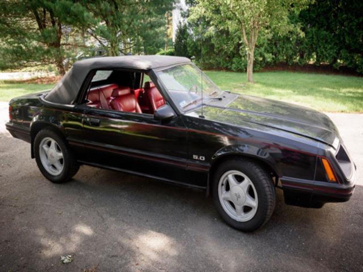 1983 ford mustang classic car clinton al 35448. Black Bedroom Furniture Sets. Home Design Ideas
