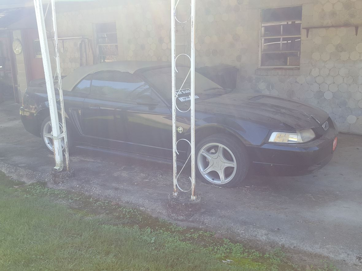 1999 Ford Mustang GT convertible for sale by owner in Hartselle